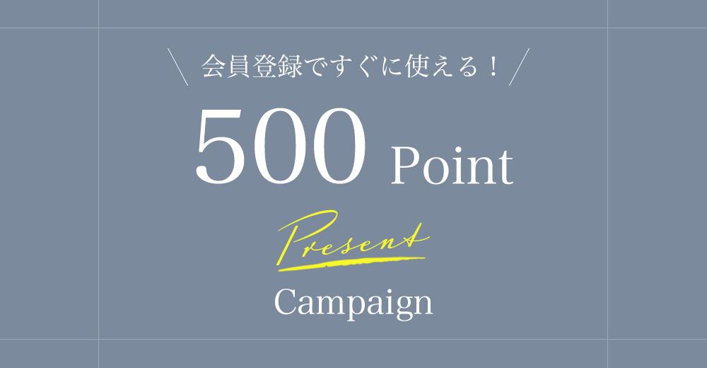 会員登録で500ポイントプレゼントキャンペーン