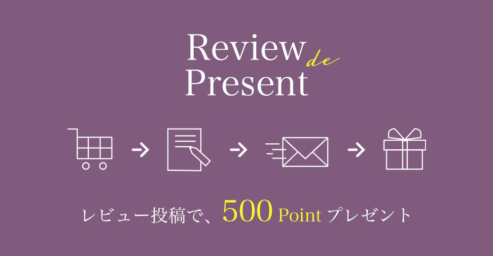 レビュー投稿で500ポイントプレゼントキャンペーン